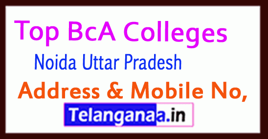 Top BCA Colleges in Greater Noida Uttar Pradesh