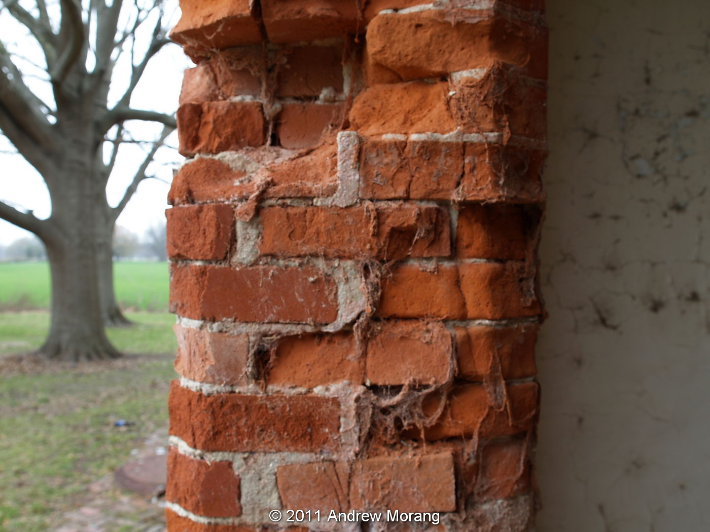 Mississippi washington county chatham - As Pointed Out In The Ms Preservation Blog Many Sections Of Brick Are Crumbling Areas Were Repointed With Modern Concrete Rather Than Soft Mortar
