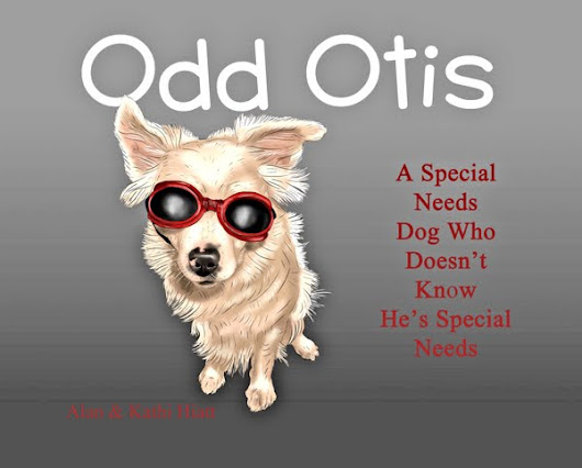 """Odd Otis: A Special Needs Dog Who Doesn't Know He's Special Needs"""