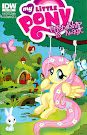 MLP Friendship is Magic #21 Comic Cover Retailer Incentive Variant