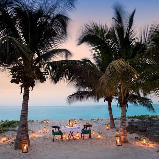 Safari Fusion blog | Romance safari style... | Barefoot dining under the swaying palm trees at Benguerra Island, Mozambique