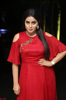 Poorna in Maroon Dress at Rakshasi movie Press meet Cute Pics ~  Exclusive 137.JPG