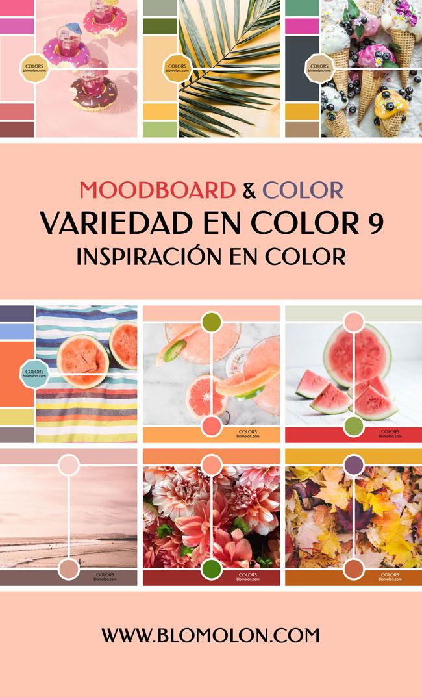 variedad_en_color_blomolon_6