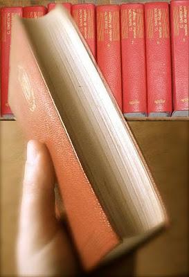 El Interior Secreto: La literatura, un gran hallazgo