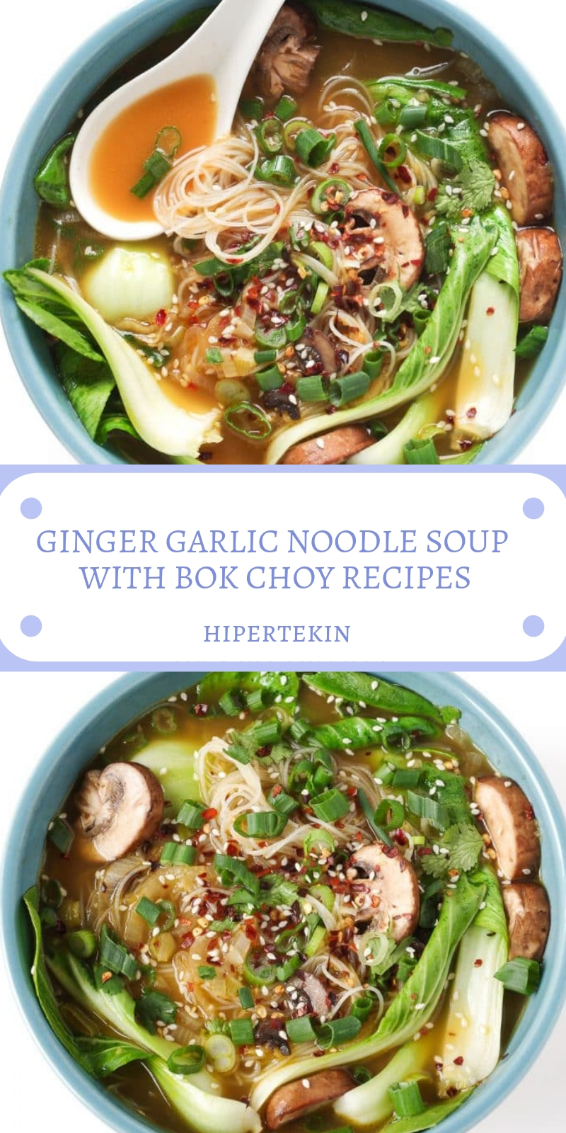 GINGER GARLIC NOODLE SOUP WITH BOK CHOY RECIPES