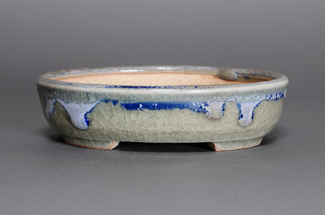 青磁釉楕円盆栽鉢(Celadon glaze bonsai pot)h1530)