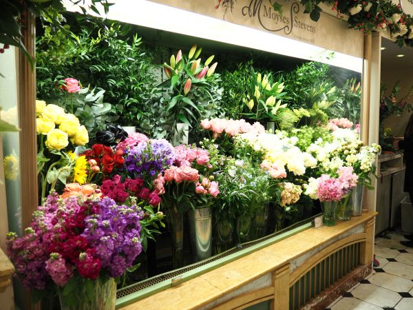 Flower stand in Harrods department store