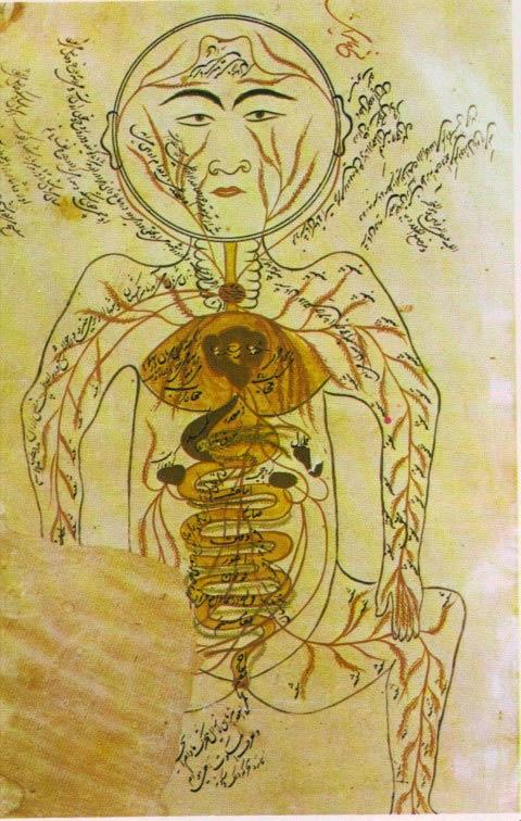 Baúl de Chity: HISTORIA DE LAS TERAPIAS EN MEDICINA