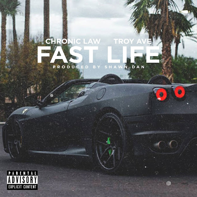 Troy Ave - Fast Life (Audio)