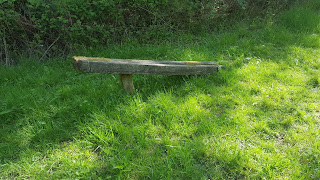a broken bench in College Wood, Nr Nash Buckinghamshire