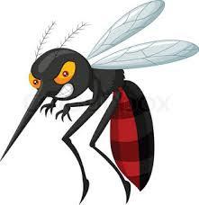 Nyamuk Betina berantas dengan HIT Obat Nyamuk, Aman Bagi Keluarga