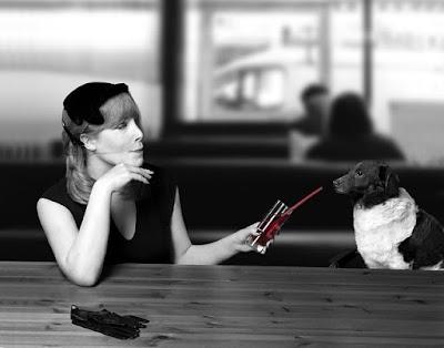 Los Perros NO son Juguetes. No los Abandones