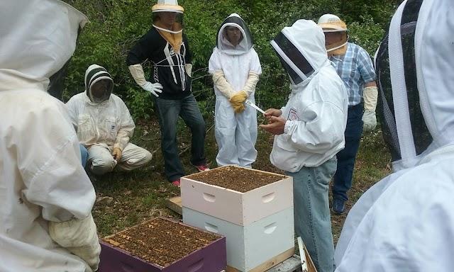 Διημερίδα μελισσοκομίας με ελεύθερη είσοδο για όλους τους μελισσοκόμους!
