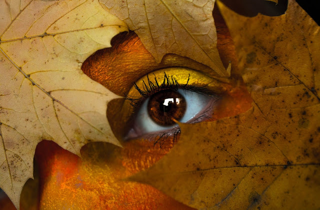 Contorno de ojos bolsas ojeras
