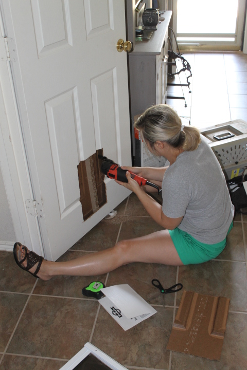 I Used My Handy Black And Decker Tool To Cut Out The Hole For The Cat Door.
