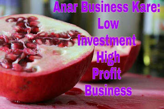 Low Investment High Profit Business Idea : Anar Business Se Lakho Kamaye