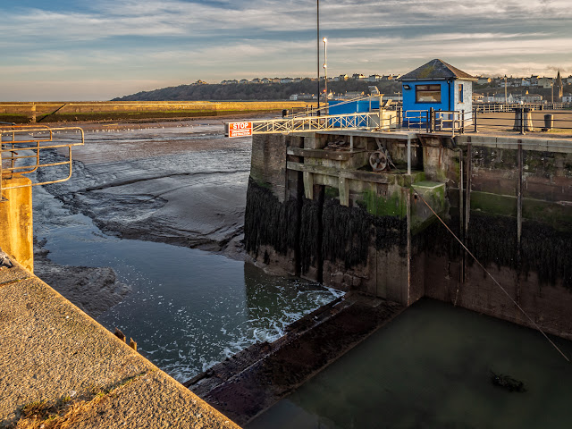 Photo of he sill that was visible when the marina gate was left open at low tide