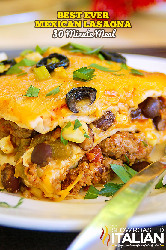 http://www.theslowroasteditalian.com/2012/09/simple-mexican-lasagna.html
