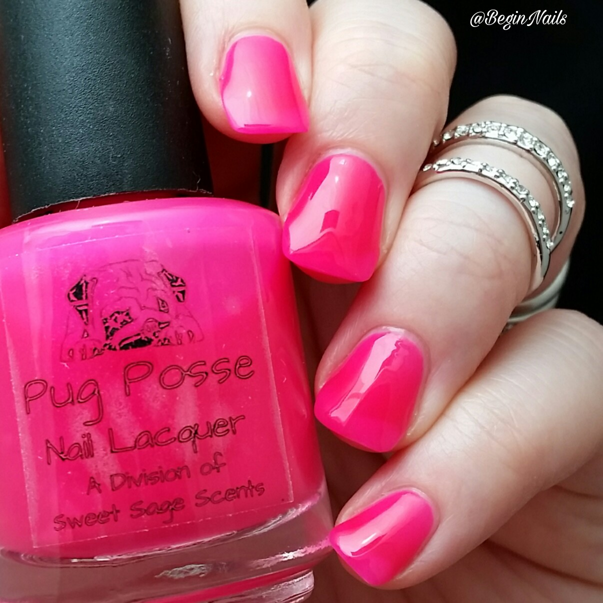 Let\'s Begin Nails: Pug Posse Nail Lacquer - Take Us To Mars ...