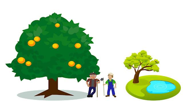 बालहंस - आम का पेड़ किसका - balhans story in hindi