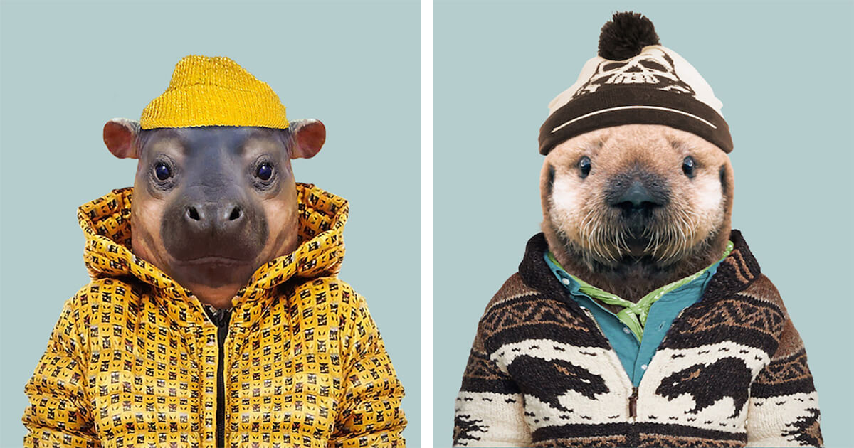 36 Adorable Portraits Of Baby Animals Dressed Like Humans