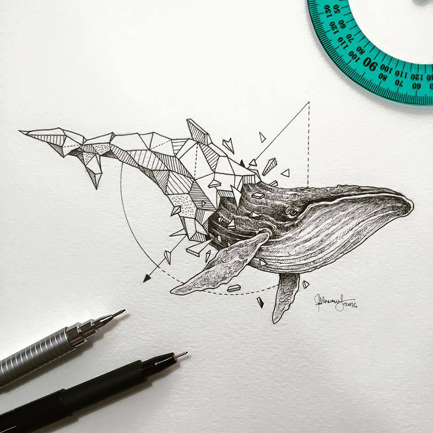 07-Whale-Kerby-Rosanes-Geometry-Coupled-with-Detailed-Drawings-of-Animals-www-designstack-co
