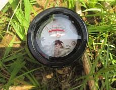 4 Dampak Negatif pH Tanah Asam atau Masam terhadap tanaman