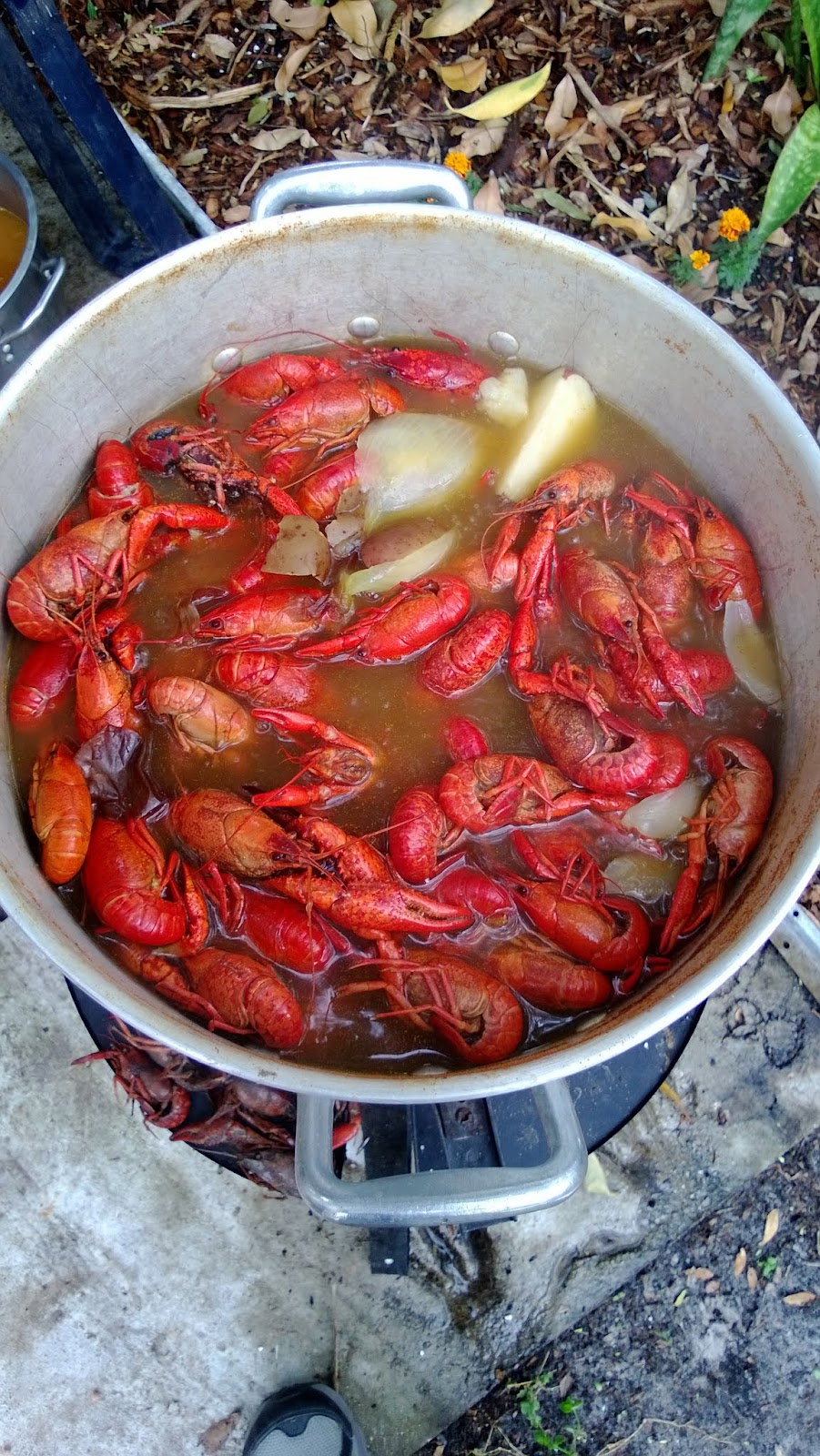 Chef on the Farm: How to bring New Orleans into your home and host