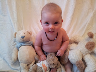 6 month old photoshoot, teddies