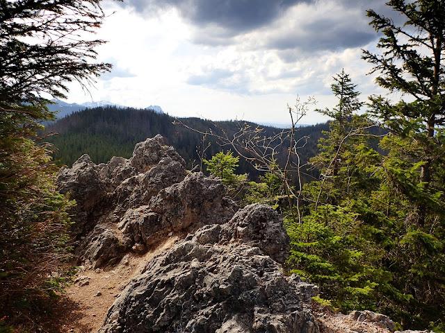 Waksmundzkie Skałki (szczyt Gęsiej Szyi)