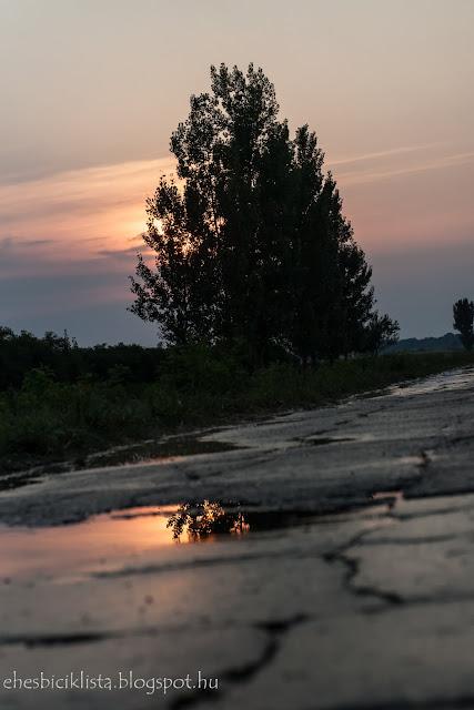 Esős aszfaltút Tiszasziget és a töltés között