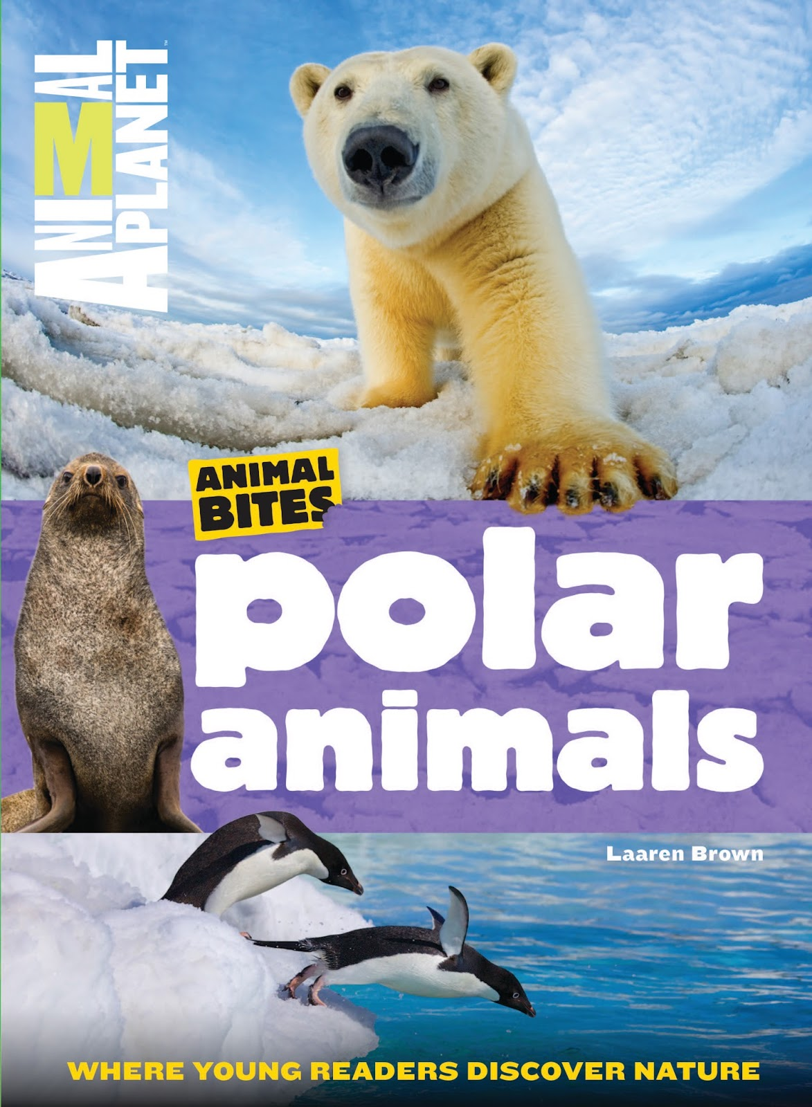 Literary Hoots: Animal Planet: Ocean and Polar Animals Books (with ...