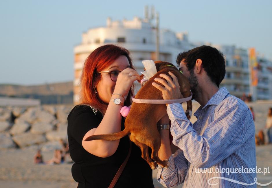 levar o cão ao casamento + animal de estimação + menina das alianças + blogue português de casal + blogue ela e ele+ ele e ela + pedro e telma