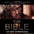 Bible Study Ideas: The Bible TV Series Study