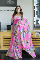 Actress Angela Krislinzki in Pink Saree Blouse Exclusive Pics March 2017 ~  107.JPG