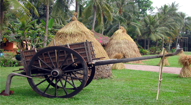 Binh Quoi tourist village 4