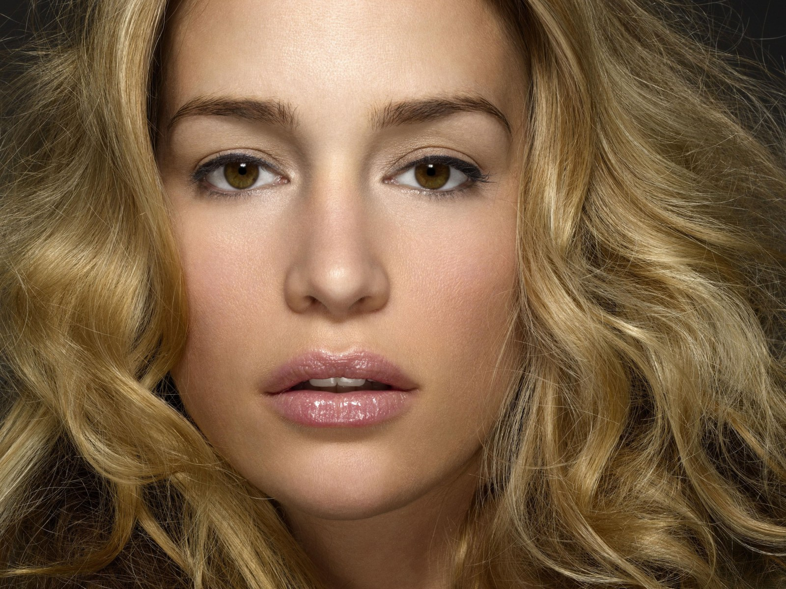 hollywood stars piper perabo - photo #19