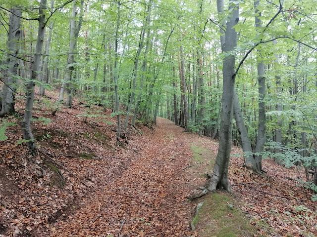 Slovak nature