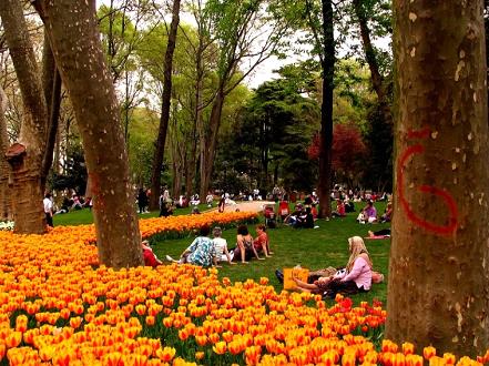 Istanbul Gardens