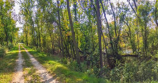 Ice Age Trail Forestville Segment