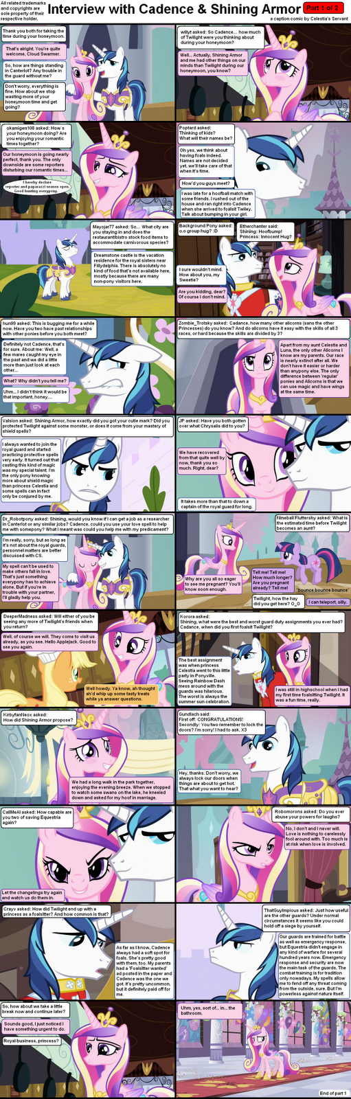 The sun mare's loyal servant: Interview with Cadence and