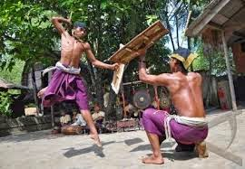 http://roniardy.blogspot.com/2015/03/2-event-budaya-terbesar-lombok.html