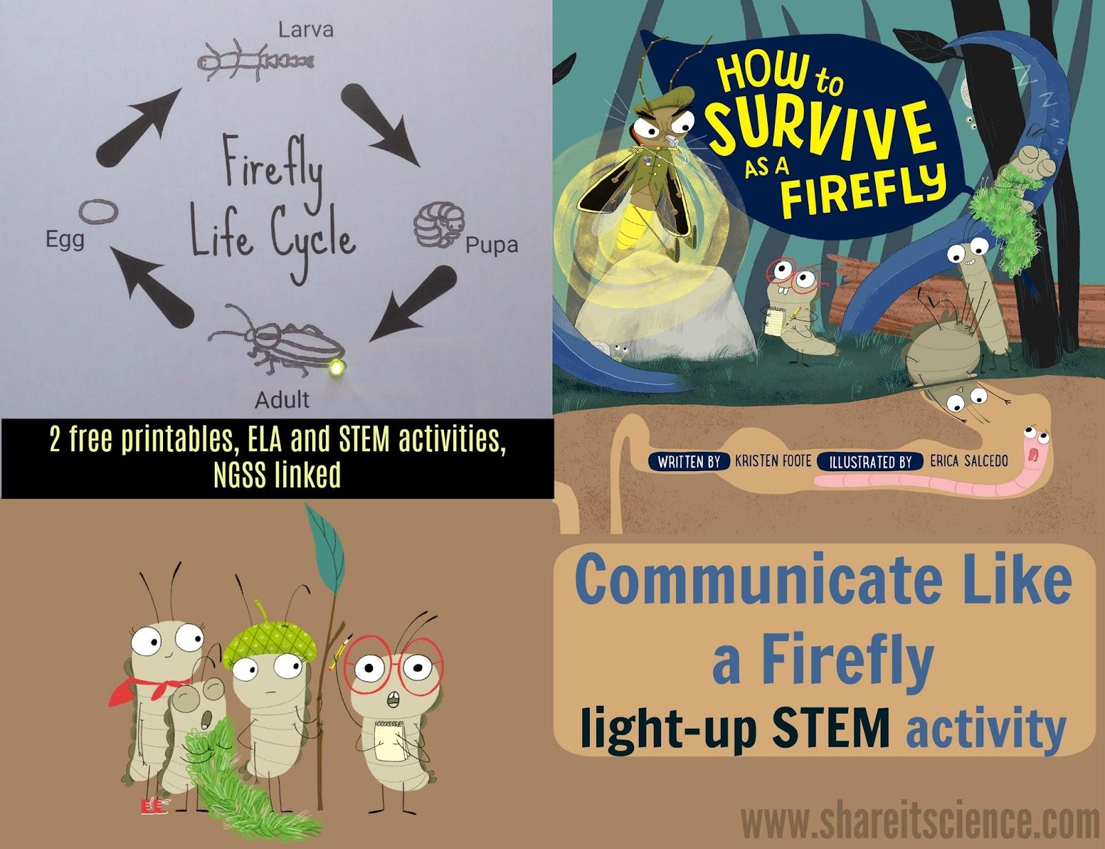 Share It Science Communicate Like A Firefly Light Up