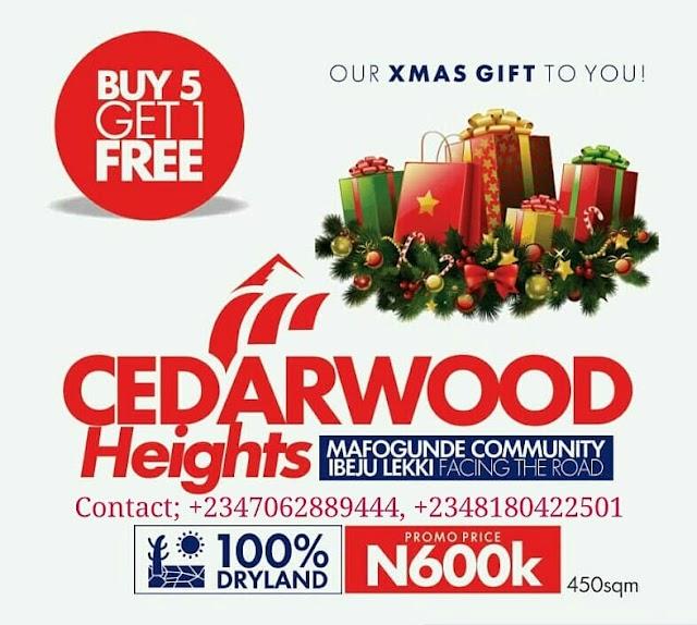 CHRISTMAS GIVE AWAY: CEDARWOOD HEIGHTS, IBEJU LEKKI, LAGOS (LAND FOR SALE)