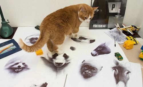 00-Yelena-Yefimova-Animals-Drawn-with-Ballpoint-Pens-www-designstack-co