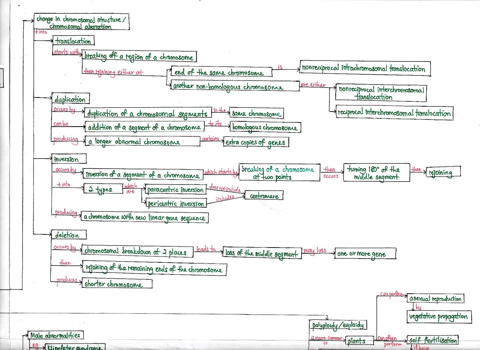 Mutation Concept Map.Biology Is To Serve Mankind Concept Map Mutation