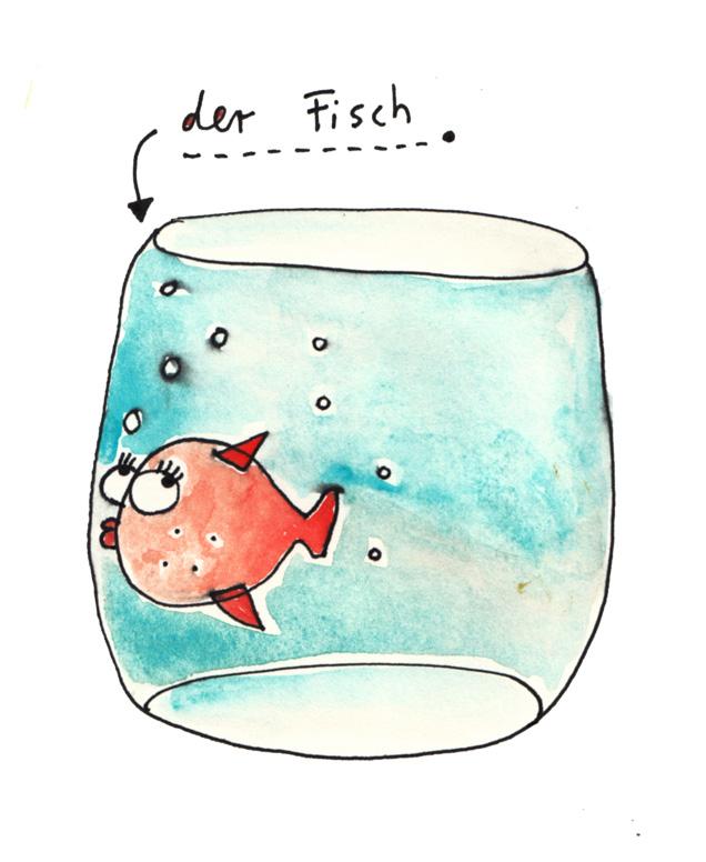 schlafen fische aquarium