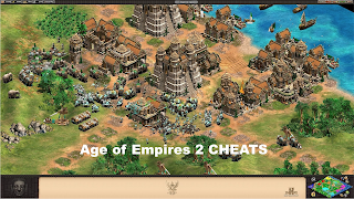 Age of empire cheats code