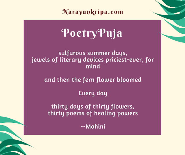 Text image for April Poetry Month Day 30 Poem: PoetryPuja