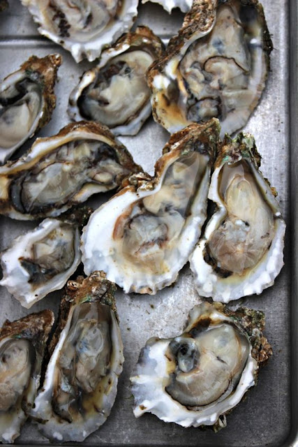 Oysters Maybe the most famous of aphrodisiacs